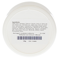 SANUS Pasta forte Salbe 100 Gramm - Rückseite