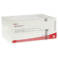 APIS BRYONIA Ampullen 50x1 Milliliter N2