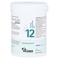 BIOCHEMIE Pfl�ger 12 Calcium sulfuricum D 6 Tabl. 1000 St�ck