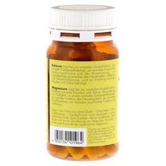 SANGO KORALLEN Kalzium Magnesium Kapseln Hinoki 60 St�ck - Linke Seite