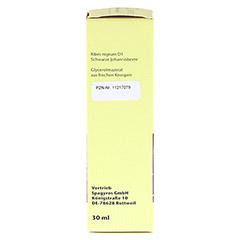 GEMMO Ribes nigrum D1 Spray 30 Milliliter N1 - Linke Seite