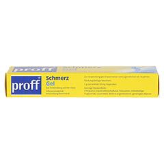 Proff Schmerzgel 50mg/g 50 Gramm N1 - Unterseite
