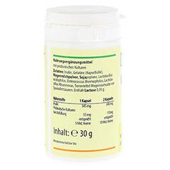 INULIN 690 mg pro Tag+probiotische Kulturen Kaps. 60 Stück - Rechte Seite