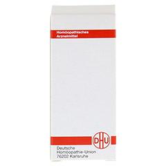 CALADIUM seguinum D 12 Tabletten 80 Stück N1 - Rückseite