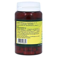 CHITOSAN Kapseln 480 mg 90 Stück - Rechte Seite