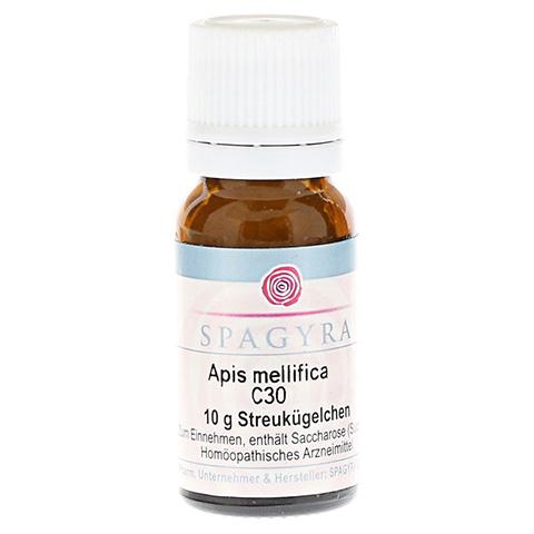 APIS MELLIFICA C 30 Globuli 10 Gramm