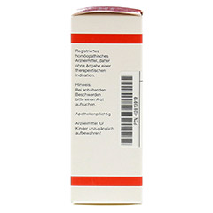 RUTA EXTERN Extrakt 20 Milliliter N1 - Linke Seite