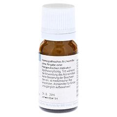 STRYCHNOS nux-vomica C 200 Globuli 10 Gramm - Rückseite