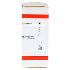 LM NATRIUM sulfuricum III Dilution 10 Milliliter N1 - Rechte Seite