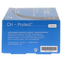CH PROTECT Trinkampullen 30x25 Milliliter - Rechte Seite