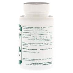 CRANBERRY 500 mg Kapseln 90 Stück - Rechte Seite