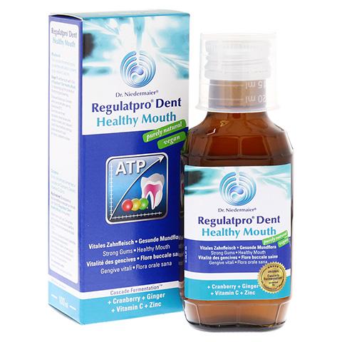 REGULAT Pro Dent Healthy Mouth 100 Milliliter