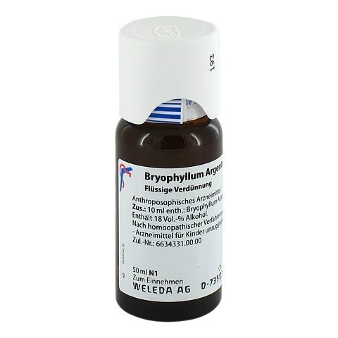 BRYOPHYLLUM ARGENTO cultum D 3 Dilution 50 Milliliter N1