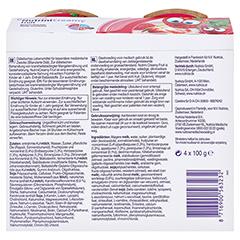 NUTRINI Creamy Fruit Beerenfrüchte 4x100 Gramm - Rückseite
