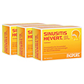 SINUSITIS HEVERT SL Tabletten 300 St�ck N3