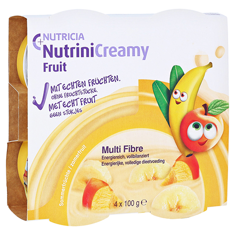 NUTRINI Creamy Fruit Sommerfr�chte 4x100 Gramm