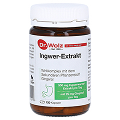 INGWER EXTRAKT Dr.Wolz Kapseln 120 Stück