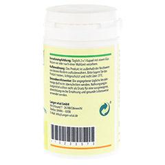 INULIN 690 mg pro Tag+probiotische Kulturen Kaps. 60 Stück - Linke Seite