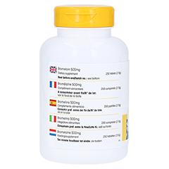 BROMELAIN 500 mg Tabletten 250 Stück - Rechte Seite