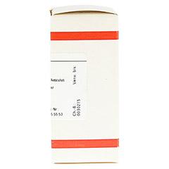 AESCULUS D 30 Tabletten 80 Stück - Rechte Seite