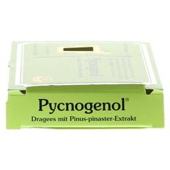 PYCNOGENOL Kiefernrindenextrakt Pharma Nord Drag. 60 Stück - Rechte Seite