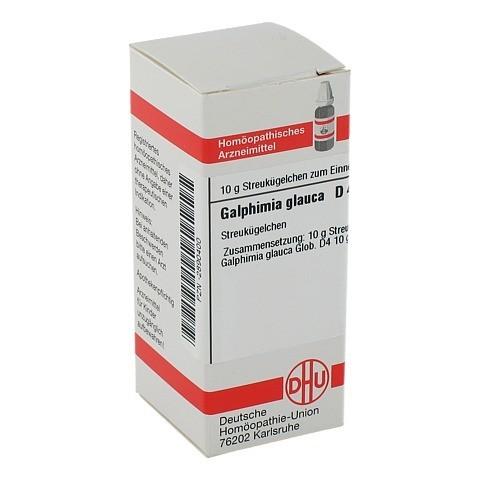 GALPHIMIA GLAUCA D 4 Globuli 10 Gramm N1