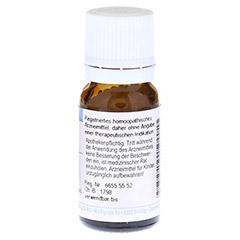 ANAMIRTA COCCULUS D 12 Globuli 10 Gramm - Rückseite