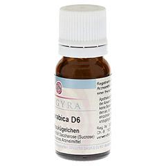 COFFEA ARABICA D 6 Globuli 10 Gramm N1 - Linke Seite