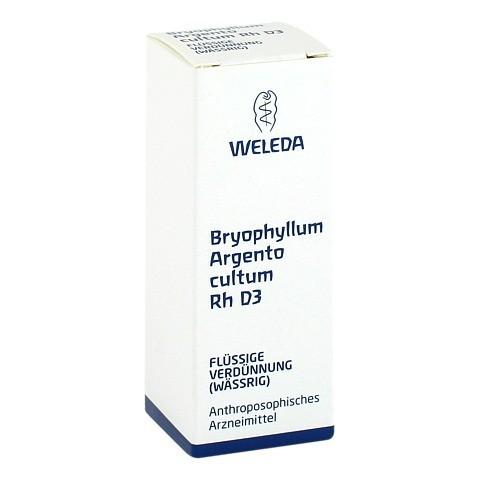 BRYOPHYLLUM ARGENTO cultum Rh D 3 Dilution 20 Milliliter N1