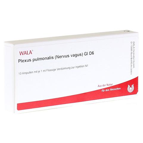 PLEXUS PULMON. NERV. VAG. GL D 6 Ampullen 10x1 Milliliter N1
