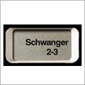 Clearblue Digital mit Wochenbestimmung Anzeigendisplay Schwanger 2-3