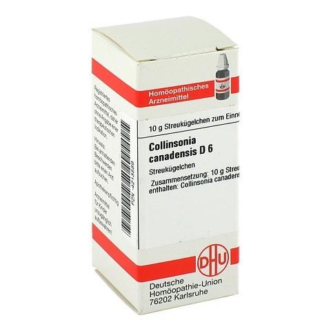 COLLINSONIA canadensis D 6 Globuli 10 Gramm N1