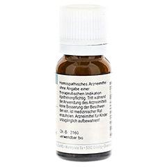 RHUS TOXICODENDRON D 6 Globuli 10 Gramm - Rückseite