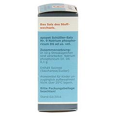 APOPET Schüßler-Salz Nr.9 Natrium phos.D 6 vet. 12 Gramm - Rechte Seite