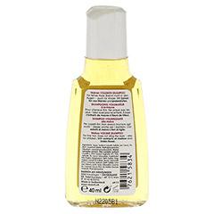 RAUSCH Malven Volumen-Shampoo 40 Milliliter - Rückseite