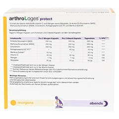 ARTHRO LOGES protect Kapseln 240 St�ck - Oberseite