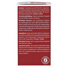 OPC nativ Kapseln 192 mg reines OPC 60 Stück - Linke Seite