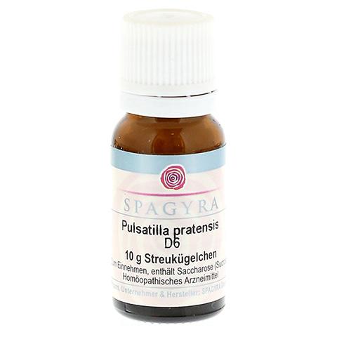 PULSATILLA PRATENSIS D 6 Globuli 10 Gramm