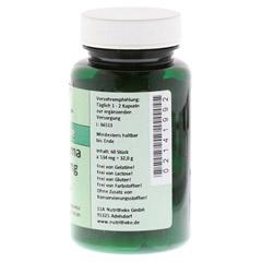 CURCUMA 400 mg Kapseln 60 St�ck - Rechte Seite