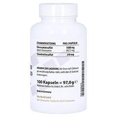 GLUCOSAMIN 750 mg+Chondroitin 100 mg Kapseln 100 Stück - Rechte Seite