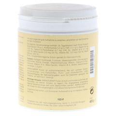 AMINOCARIN Pulver Dose 400 Gramm - Rückseite