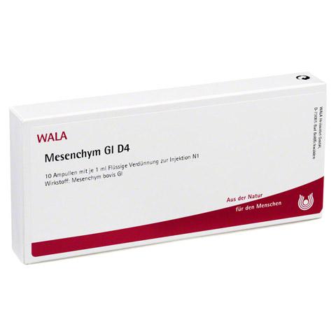 MESENCHYM GL D 4 Ampullen 10x1 Milliliter N1