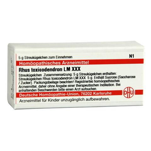 LM RHUS toxicodendron XXX Globuli 5 Gramm N1