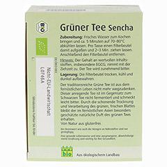 GR�NER TEE Bio Salus Filterbeutel Gro�packung 40 St�ck - Unterseite