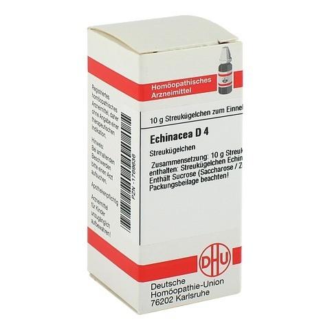 ECHINACEA HAB D 4 Globuli 10 Gramm N1