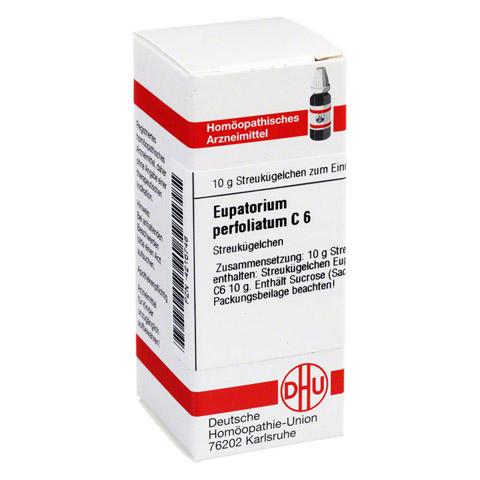 EUPATORIUM PERFOLIATUM C 6 Globuli 10 Gramm N1