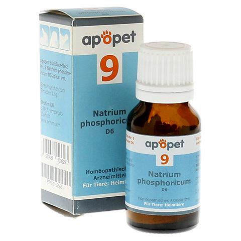 APOPET Schüßler-Salz Nr.9 Natrium phos.D 6 vet. 12 Gramm