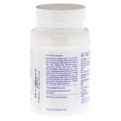 PURE ENCAPSULATIONS Anti-Stress Pure 365 Kapseln 60 Stück - Rückseite