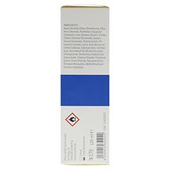 REMITAN trockene Haut Extremoin Schaum 125 Milliliter - Rechte Seite