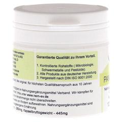 PANGAM Vitamin B15 Kapseln 120 Stück - Linke Seite